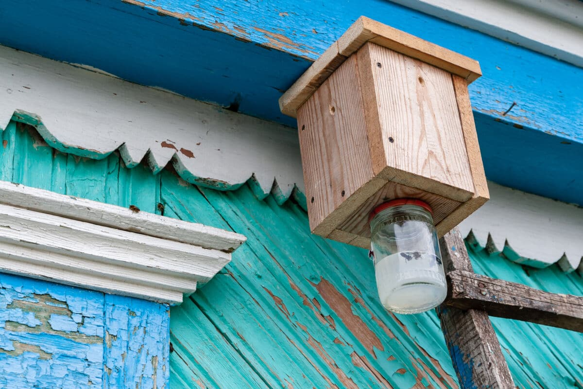 Wooden carpenter bee Trap on the side of a house
