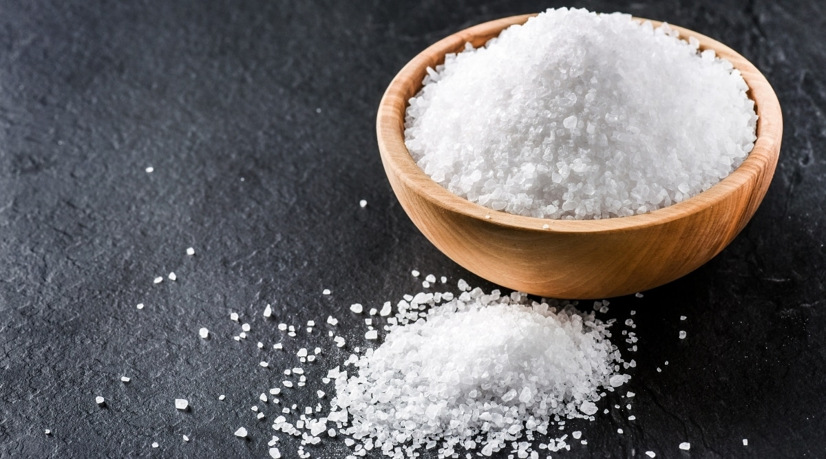 Salt Being Used to Kill off Ants
