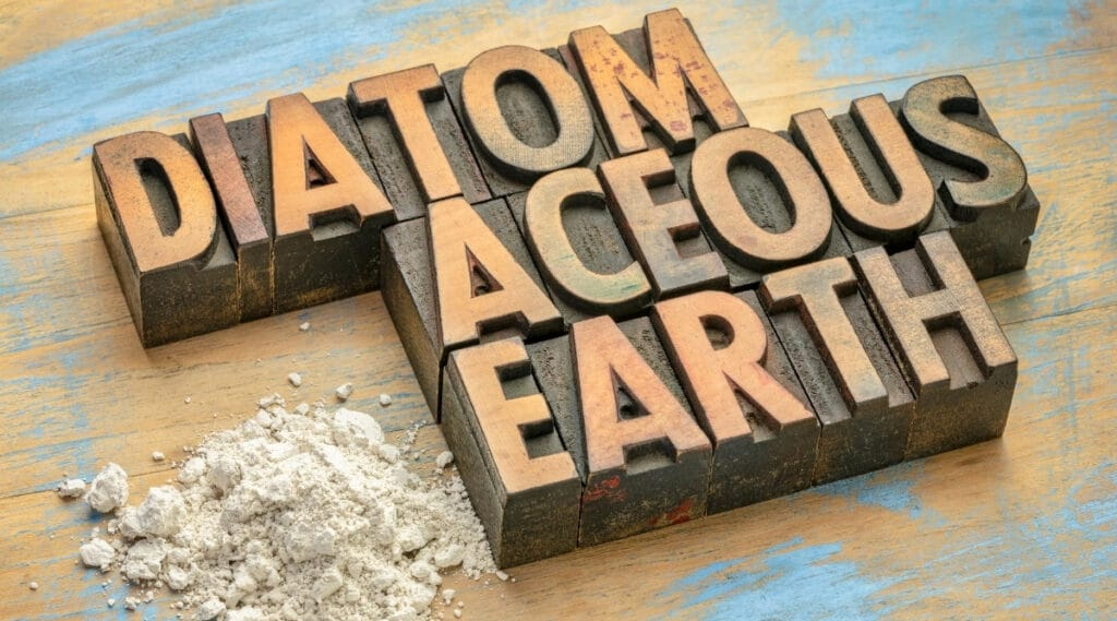 Diatomaceous Earth Substance