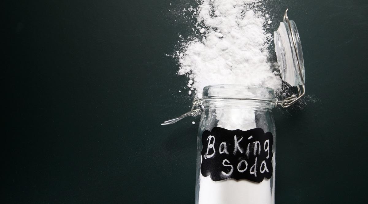 Baking Soda For Fleas