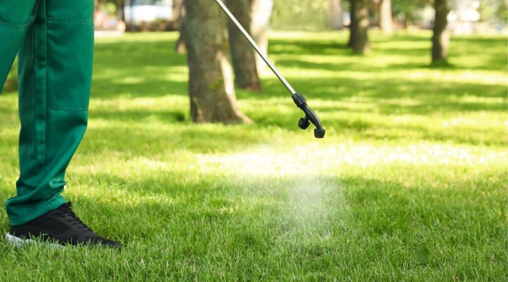 Man treating yard with spray