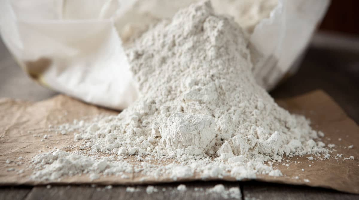 A pile of diatomaceous earth spilling out of a white bag