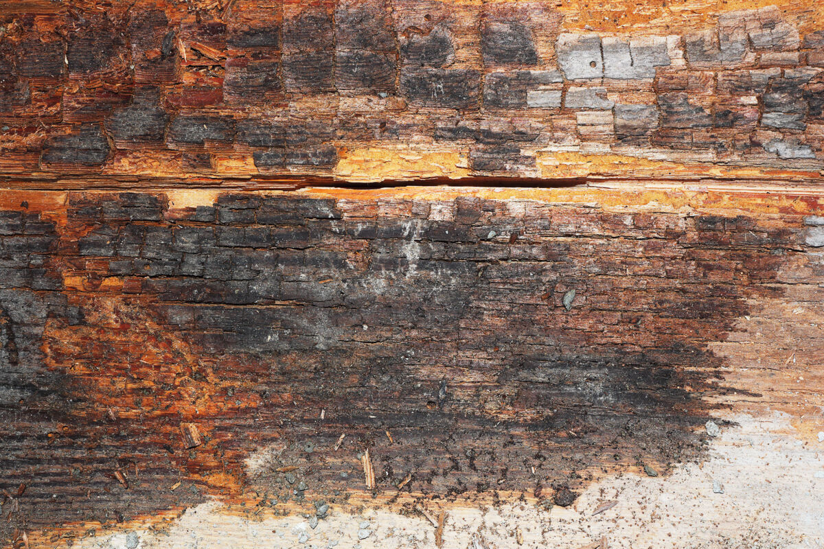 dry rot damage on an old barn