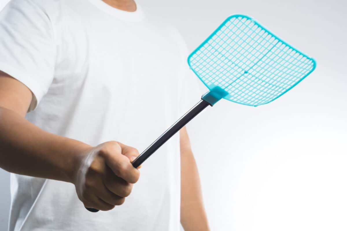 Man in a white t-shirt with a wide blue fly swatter