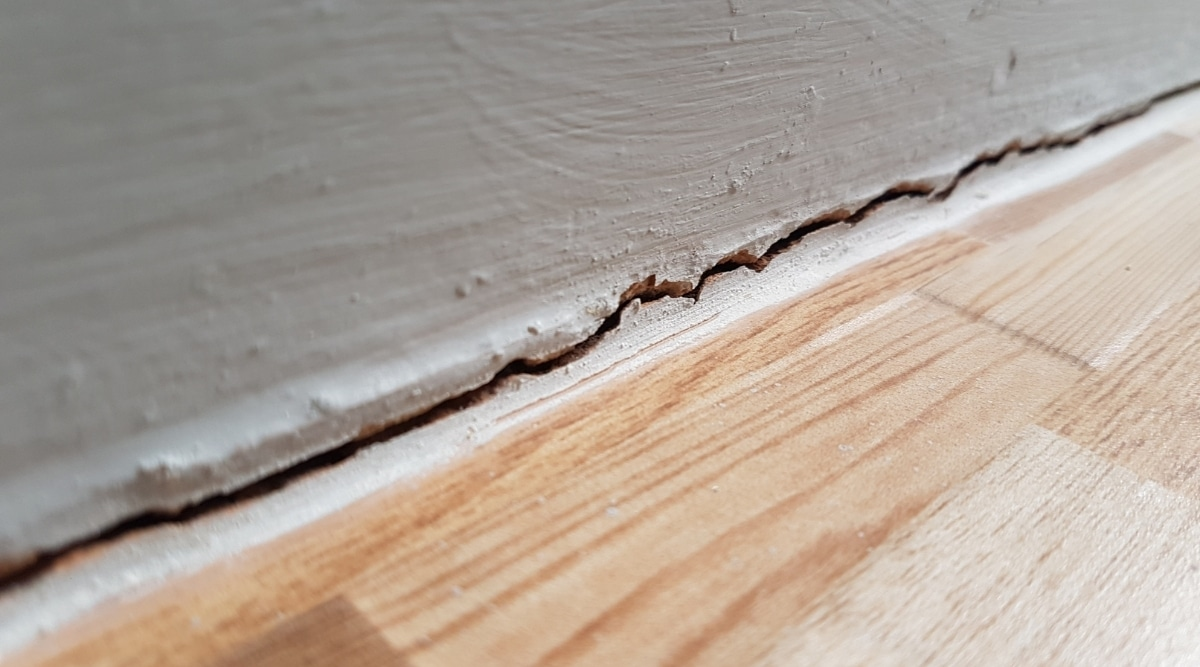 Crack in Home For Mice Infestation